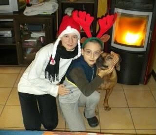 Red Kedi con il fratello nano e cane in versione natalizia